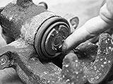 Kupferpaste auftragen